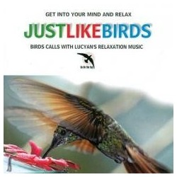 Like The Birds CD