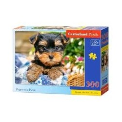 Puzzle 300 Puppy on a Picnic CASTOR